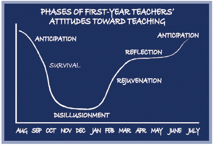 phases of the first year teaching